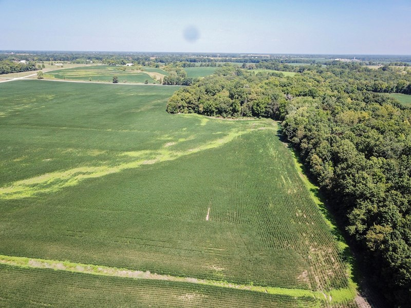 Audrain Tract 4 - 84.3 ac