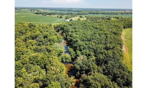Tract 5 - 49 ac +/- for auction in Audrain County, Missouri