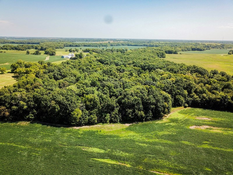 Audrain Tract 5 - 49.7 ac