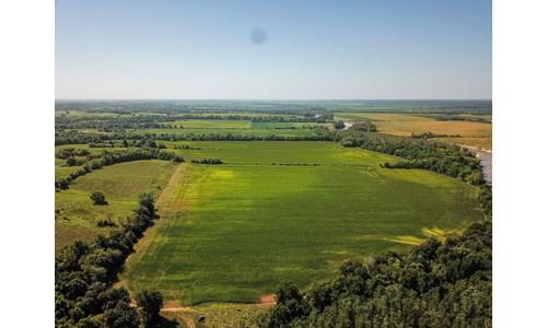 130 ac +/- Macon County Farmland Auction