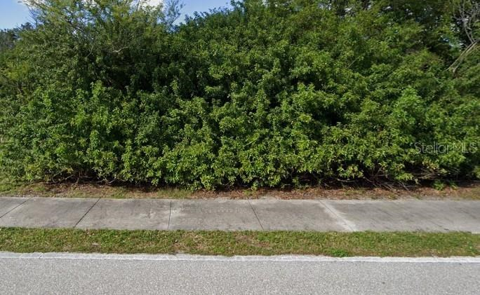 Buildable lot in Port Charlotte