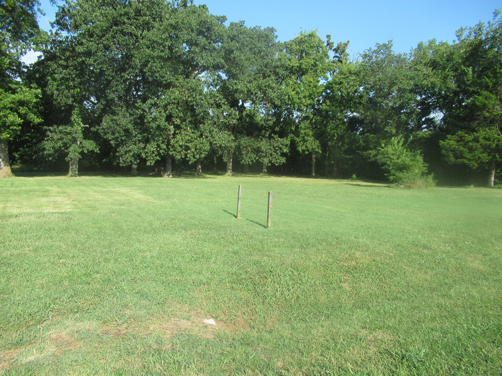 Lot For Sale In Greenfield, Mo
