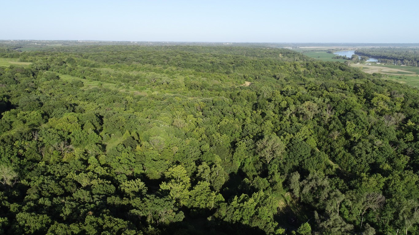 20+/- Secluded Acres, Bluff Views, Hunting, Cabin/Camping