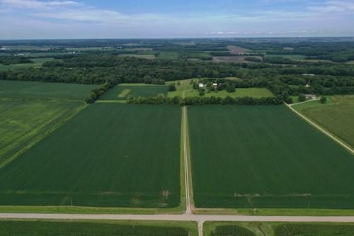 Southern Illinois Farm Land for Sale   Tillable Land Auction
