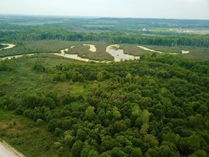 HUNTING & RECREATIONAL LAND FOR SALE ON PIGEON CREEK SO. IN