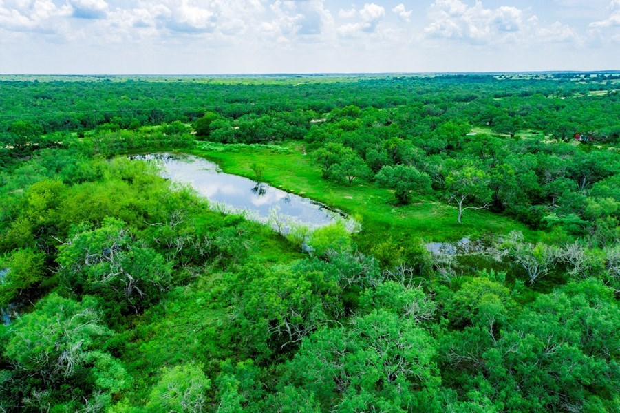 Unrestricted Land For Sale In Atascosa County