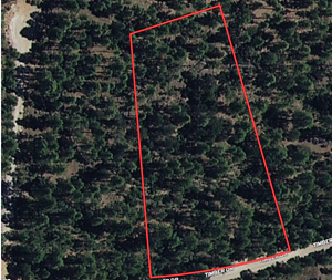 WOOD ACREAGE SOUTHERN MOUNTAINS NEW MEXICO FOR SALE