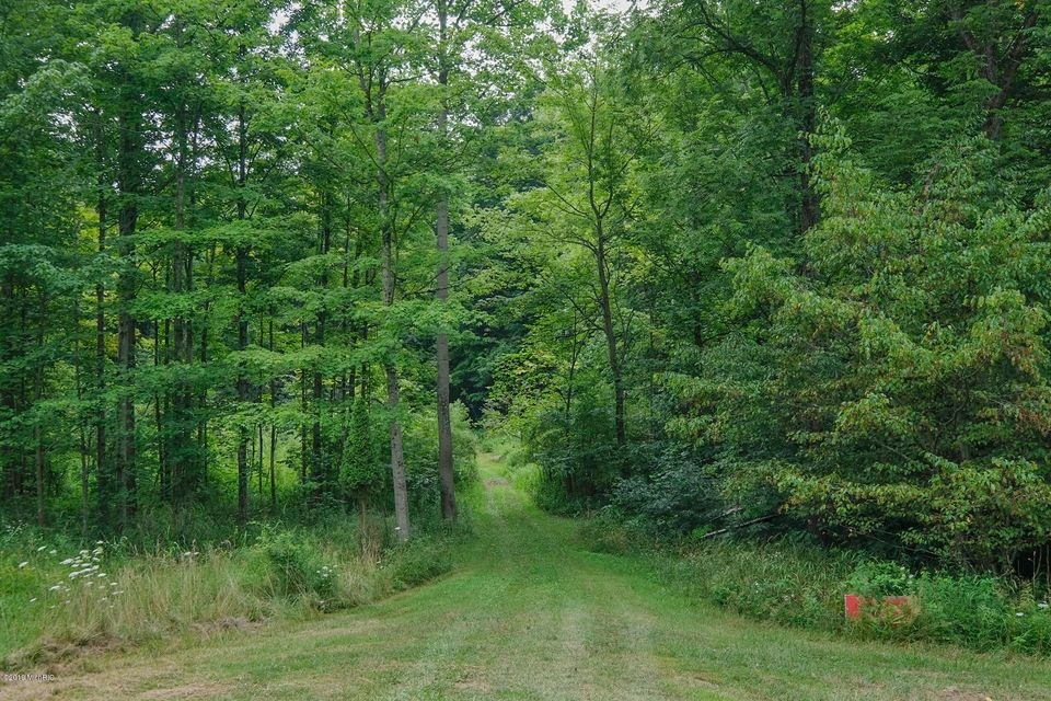 Rare Hunting Land For Sale in Lawrence, MI!