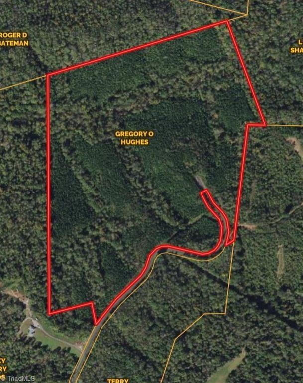 Land For Sale In Sandy Ridge NC 27406