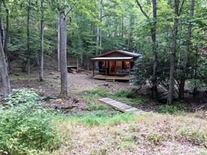 CABIN & 16 ACRES ADJOINING NATIONAL FOREST WYTHEVILLE, VA