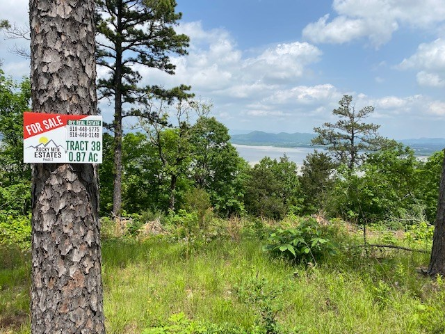 Sardis Lake Land for Sale Clayton, OK-Mountain Building Lot