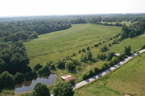 Farm for sale in Five Points TN