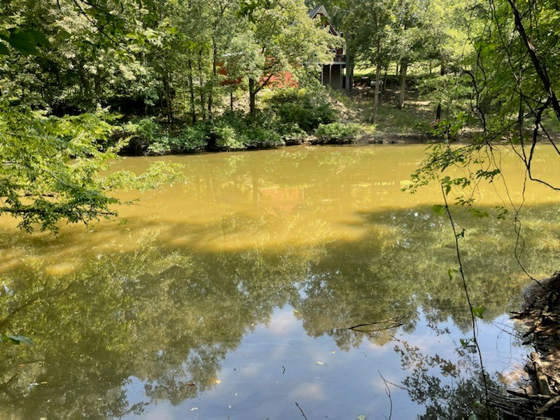 Waterfront Lot on Beech Creek Right Off the TN River!