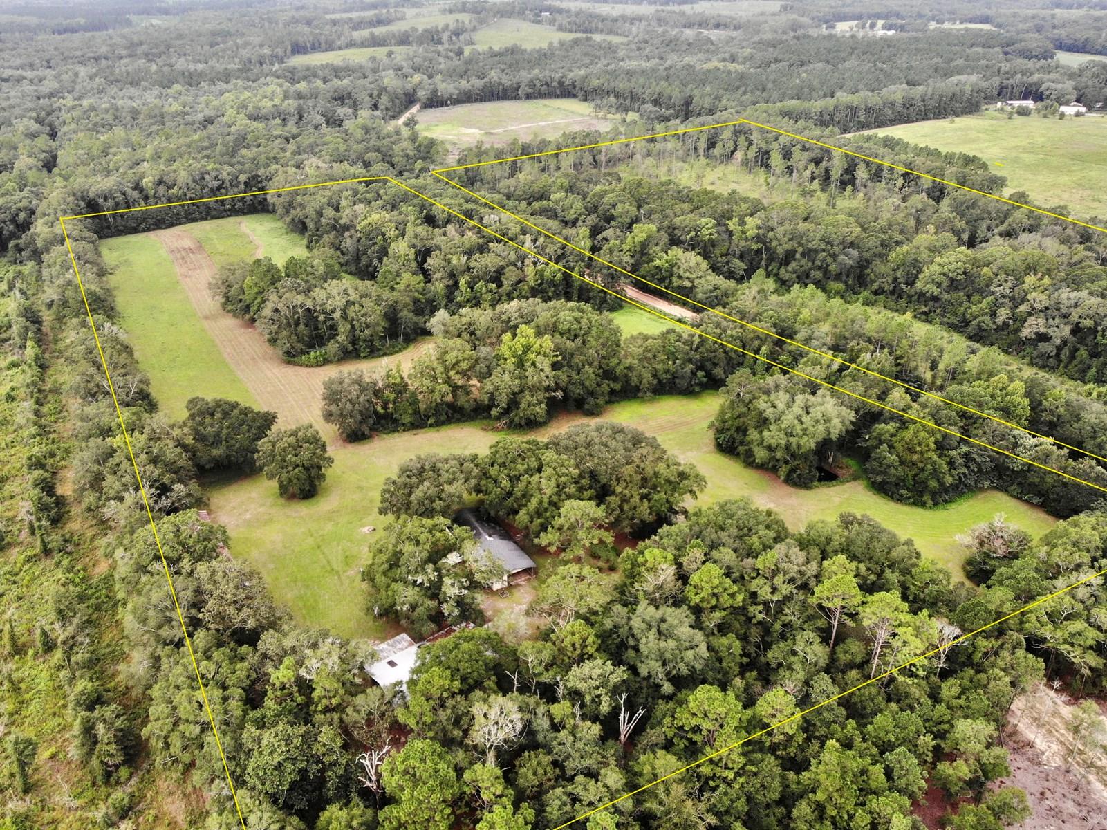 Country Home & Land For Sale below Hartford Alabama