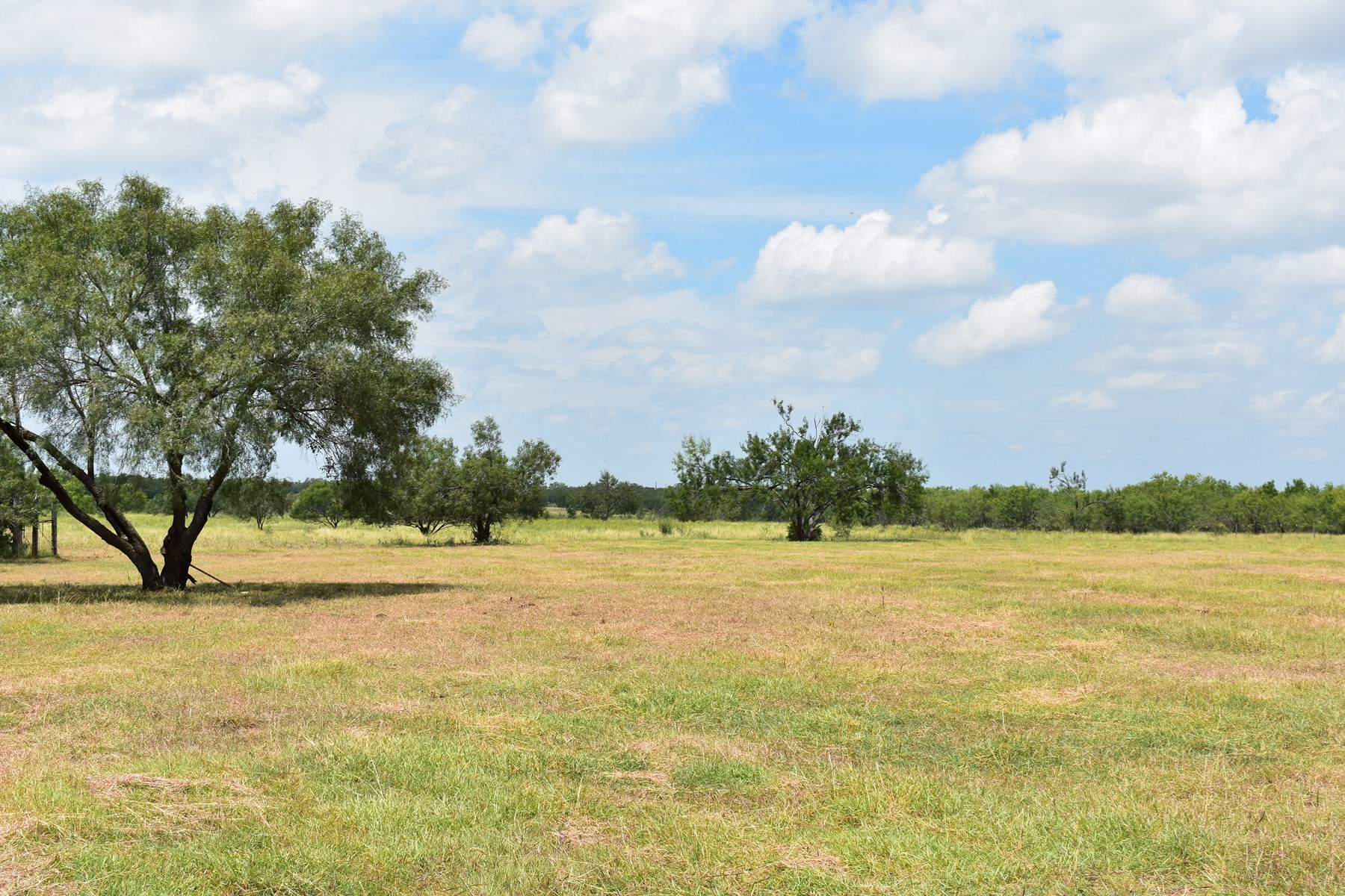 South Texas Ranch!  Minutes from Town with Great Hunting