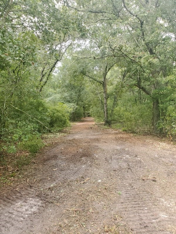 4 ACRES CLEARED IN JASPER, FLORIDA FOR SALE
