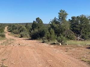 MOUNTAIN PROPERTY FOR SALE NEAR PUBLIC LAND - NORTHERN AZ