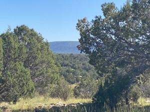 MOUNTAIN LAND WITH NO HOA FOR SALE ARIZONA