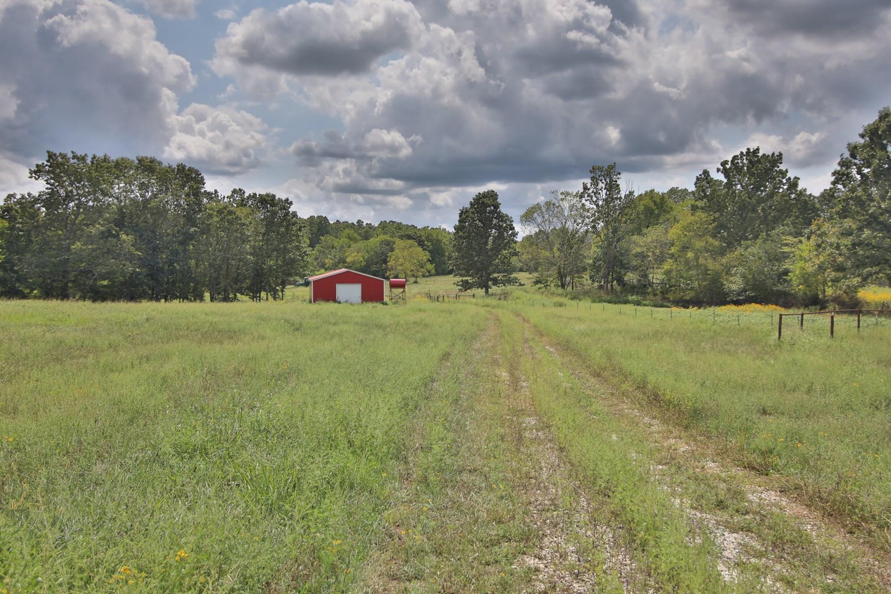 Productive Cattle Farm in Alton, Missouri