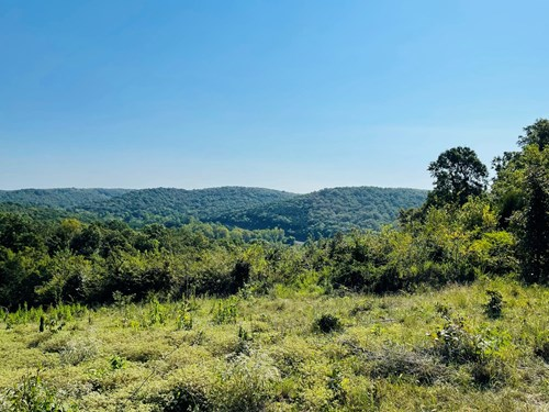 62 ACRES WITH A YEAR ROUND CREEK AND SCENIC VIEWS