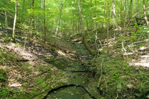 Land in Tennessee with Creek & Water Fall and Owner Terms!