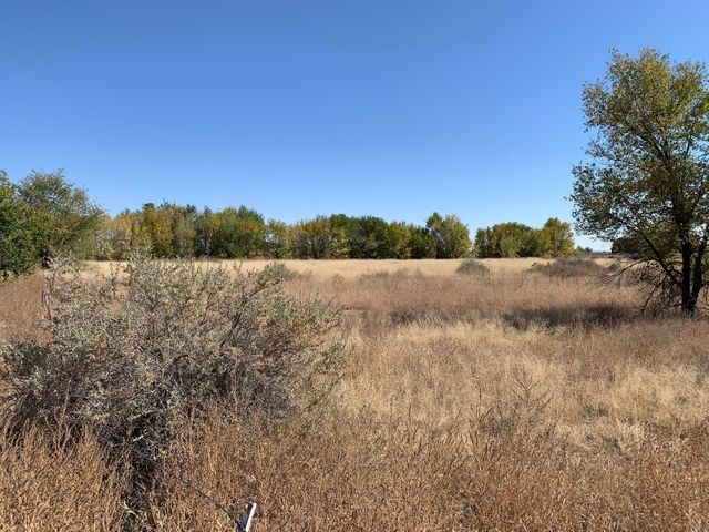 1± Acre Residential Lot For Sale in Estancia, New Mexico