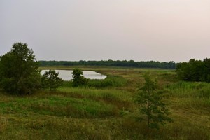 HUNTING & RECREATIONAL PROPERTY W/LAKES FOR SALE WARRICK CTY