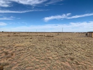 5± ACRE RESIDENTIAL LOT FOR SALE IN MORIARTY, NEW MEXICO