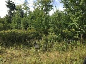 LAND FOR SALE IN WESLEY, MAINE