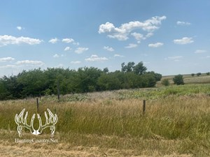 320 ACRES M/L OF MEADE COUNTY KANSAS GRASSLAND FOR SALE