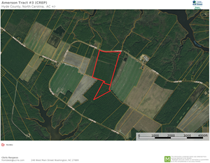RECREATIONAL TIMBERLAND FOR SALE IN HYDE CO, SCRANTON, NC