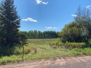 95± ACRES OF HUNTING & FARMING LAND FOR SALE NEAR BRUNO MN