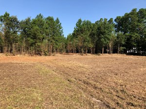 LAND FOR SALE IN BEAUFORT COUNTY
