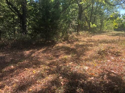 Arkansas Ozark Acreage w/View For Sale