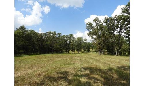 20 ac +/- Tr. 2 of 4   No Reserve Land Auction, Sparks OK