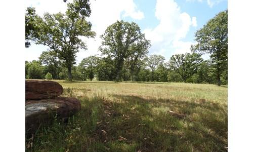 42 ac +/- Tr. 3 of 4   No Reserve Land Auction, Sparks OK
