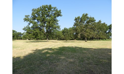 82 ac +/- Tr. 4 of 4   No Reserve Land Auction, Sparks OK