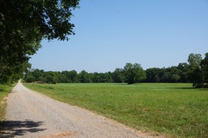 46 AC +/- TR. 7 OF 7   NO RESERVE LAND AUCTION, MEEKER, OK