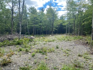 LAND FOR SALE IN ENFIELD, MAINE