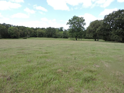 40 acres with a cabin that needs repaired.