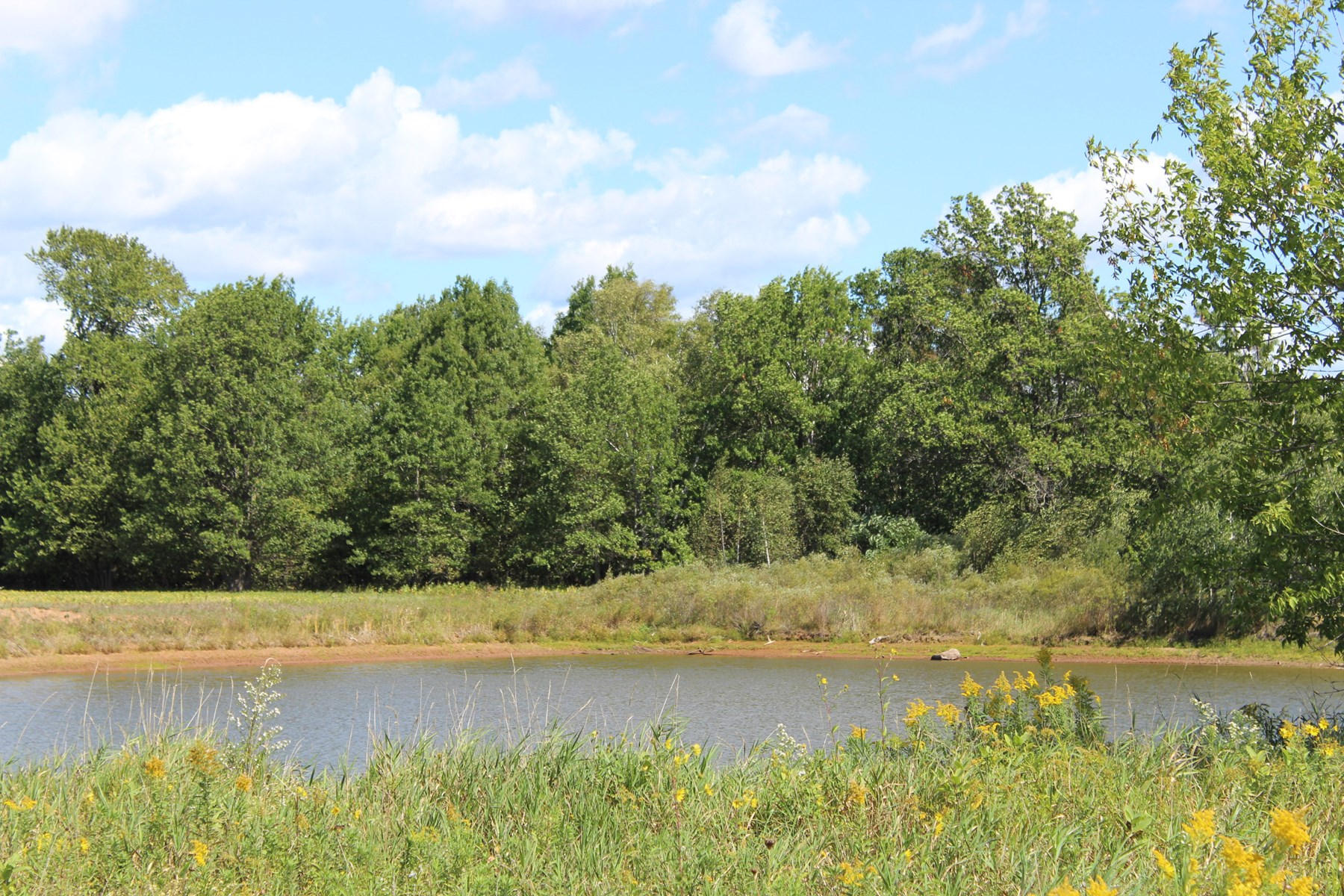 Beautiful 136.95 Pine County Land for Sale