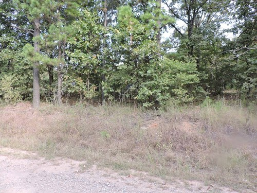 4 wooded acres m/l with a great view.