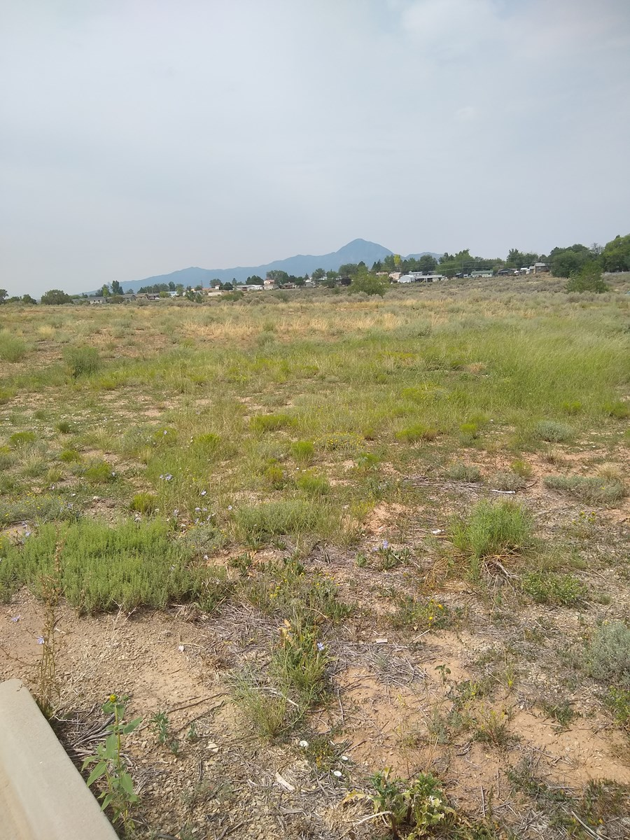 Six Adjacent Lots For Sale in Cortez, CO!