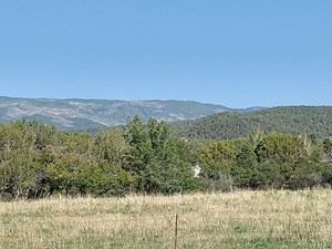 AMAZING FARM LAND AT THE BASE OF THE GRAND MESA WITH WATER!