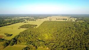 RECREATIONAL & HUNTING LAND PROPERTY FOR SALE BOGATA TEXAS