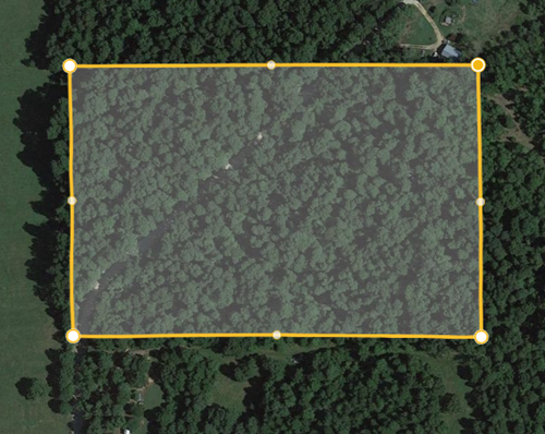 20 Acres (more or less) in Clay Country Arkansas