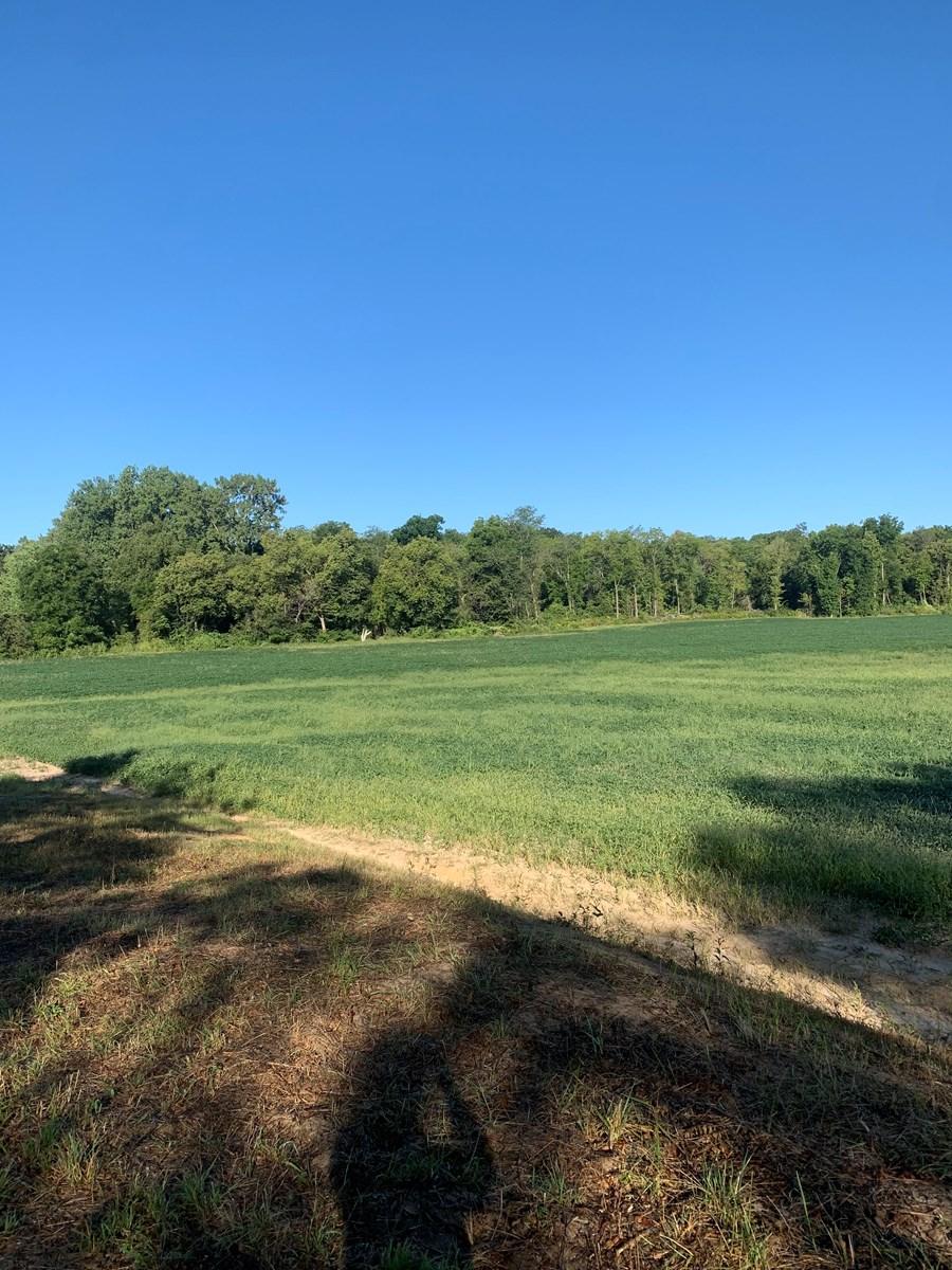 Northern Missouri Income w/ Hunting Farm