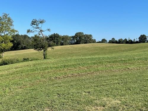 70 Acre farm for sale near Smiths Grove, Ky.