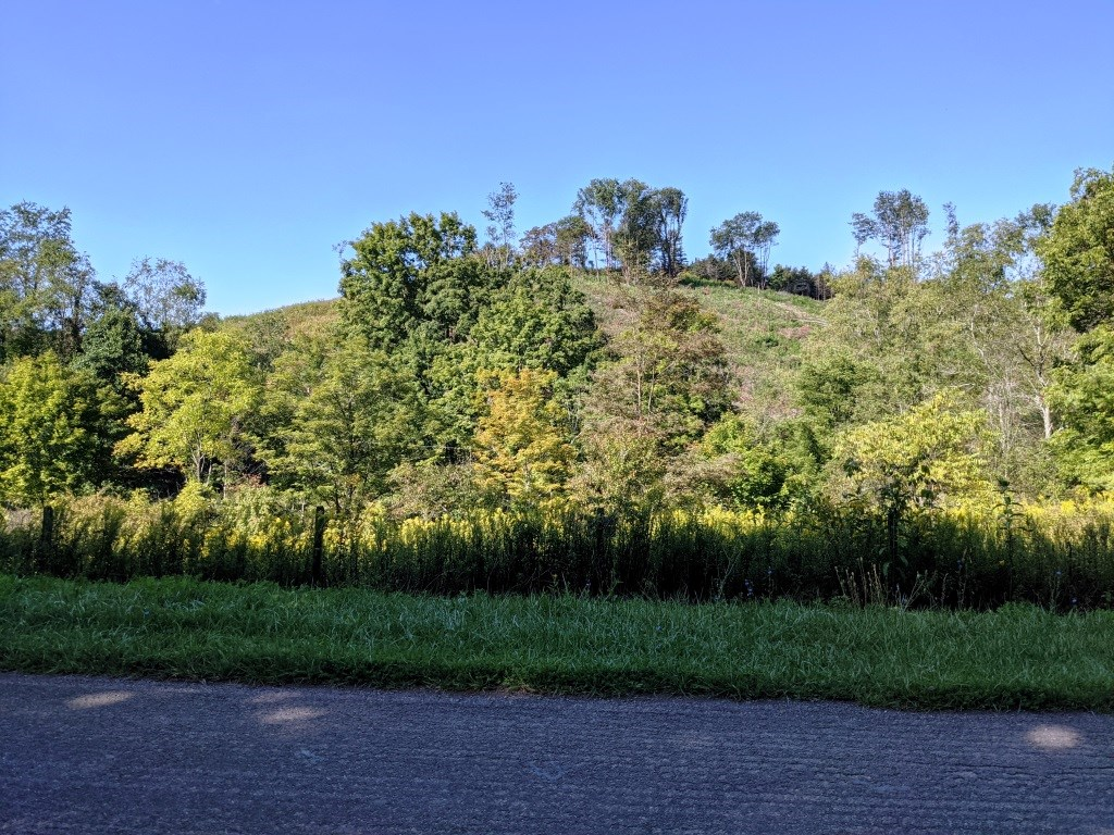 Views, building sites, pond site Rural Retreat, VA