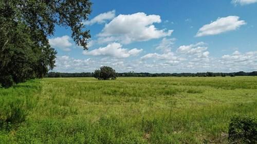 BEAUTIFUL FARM LAND IN CHIEFLAND FLORIDA!